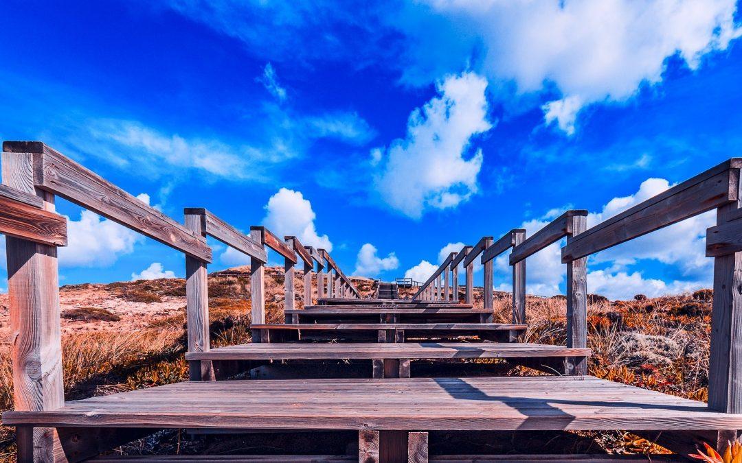 Aprovados 8 novos projetos na região do Algarve