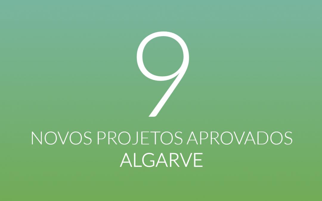 Aprovados 9 novos projetos de inovação social no Algarve
