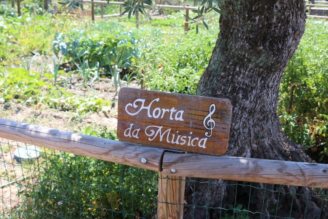 Horta Comunitária Bairro da Alâmpada – Boidobra