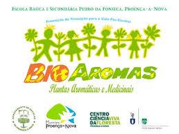 BioAromas